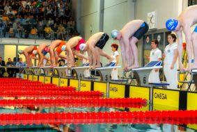 zawody pływackie Gliwice